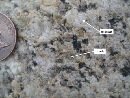 Close up of the granodiorite erratic with a 2p coin for scale. The feldspar crystals, of more than one species, are white and opaque and tend to have regular margins. The quartz crystals are translucent, like clear bottle glass; they fill the spaces between other crystals so their margins tend to be irregular. The dark crystals are of several different mineral species, all of which contain higher proportions of iron and magnesium than the feldspars. Quartz contains no iron or magnesium.