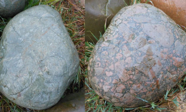 Two Borrowdale Volcanic erratics found at Brockholes, fine-grained on the left and a breccia on the right