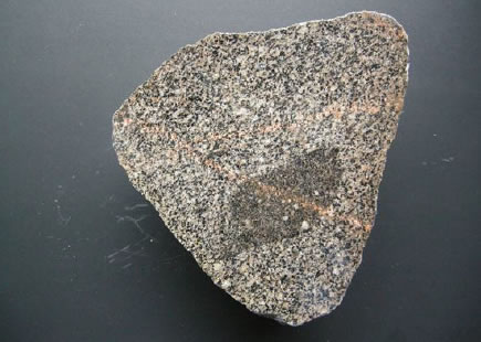 Granodiorite with a dark 'xenolith' – possible a piece of the rock into which the granite had been intruded, which became partially absorbed into the granite. At some time later, veins of molten igneous rock were 'injected into the cooling mass and can be seen cutting through the granodiorite and the xenolith. This rock is between 425 and 400 Ma old and also travelled from S W Scotland