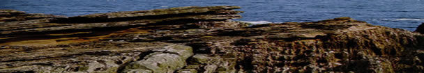 Hutton's unconformity at Siccar Point, where the older Silurian greywacke rocks have been folded so that the beds are vertical, and eroded. Above this the younger Devonian red sandstones were deposited horizontally and have since been gently tilted. (Bakersfield College image from the internet)