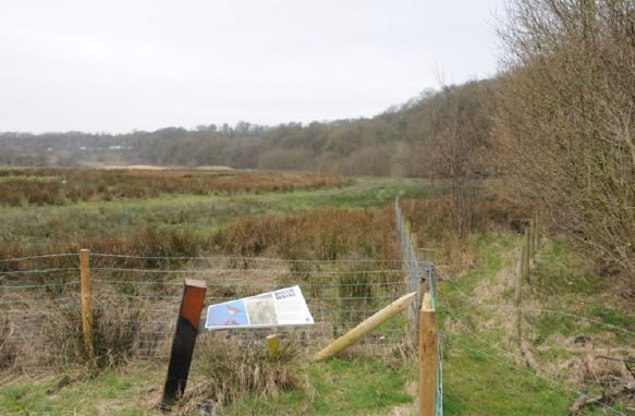 View from near the Boilton Wood sign board looking west. Boilton Wood, on the right, follows the line of an old meander. The wood is on the bank of boulder clay, now at a shallow angle as a result of landslips. The bank continues for almost a mile to the west. The A59 just on the Preston side of the M6 climbs up the bank of the same old meander.