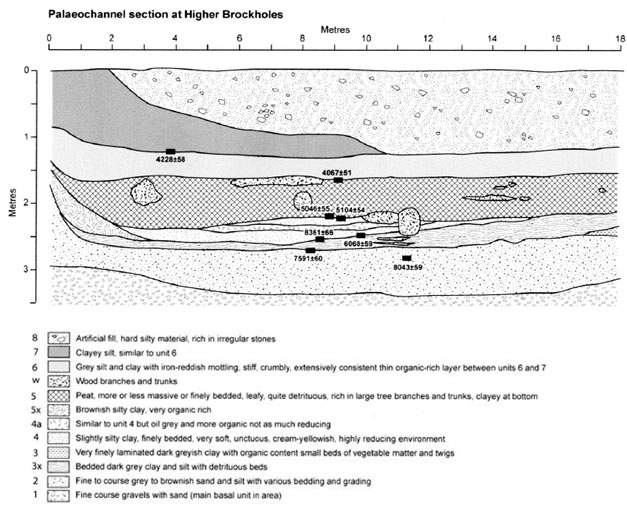 Figure 46 Radiocarbon-dated subsurface sediment sequence (section C1) in the large palaeo-meander loop on terrace T2 at the Brockholes meander recorded by Chiti (2004) Section C1 and terrace T2 can be found in Figure 45