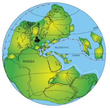 Reconstruction of the position of the continents at about 250 Ma ago. The British Isles lie in the middle of a large continent, Pangaea, at about 25° north of the Equator. (From the internet)