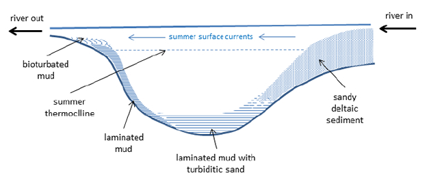 Model for deposition in a non-saline lake with an annual 'depleted oxygen' environment in the summer due to thermal stratification. Diagram based on a figure from Carbonate Sedimentology by Tucker and Wright 12.