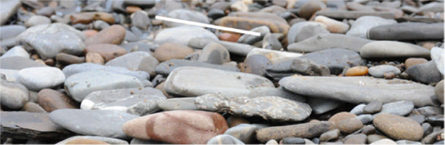 Imbricate arrangement of flat pebbles; stream direction right to left; white line indicates typical slope of flat pebbles.