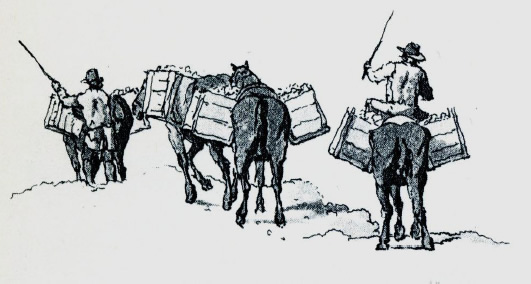 Lime gals taking quicklime to market (etching from W H Pyne 1806)