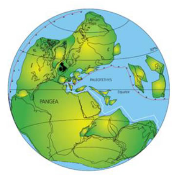 Reconstruction of the position of the continents at about 250 Ma ago. The British Isles lie in the middle of a large continent, Pangea, at about 25° north of the Equator.